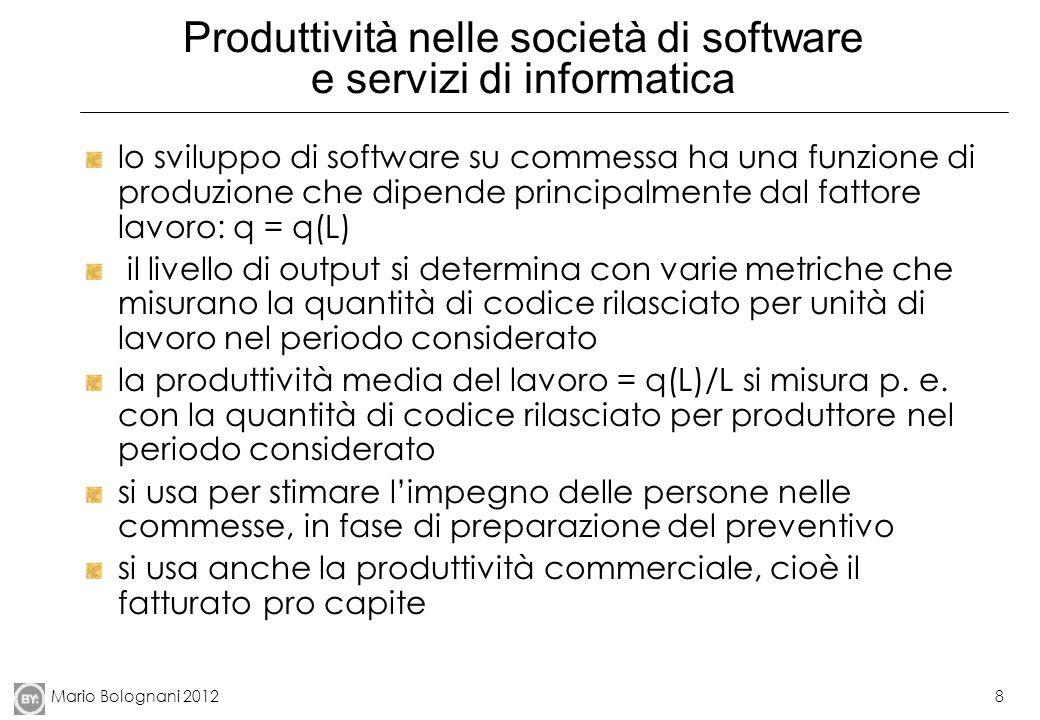 Produttività nelle società di software e servizi di informatica