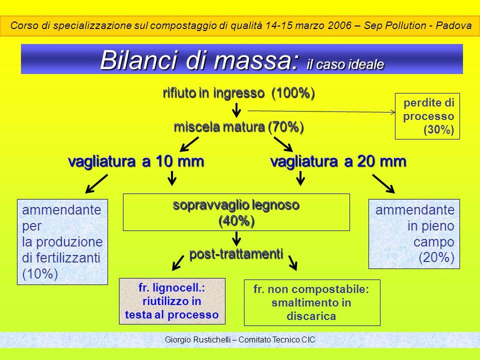 Bilanci di massa: il caso ideale