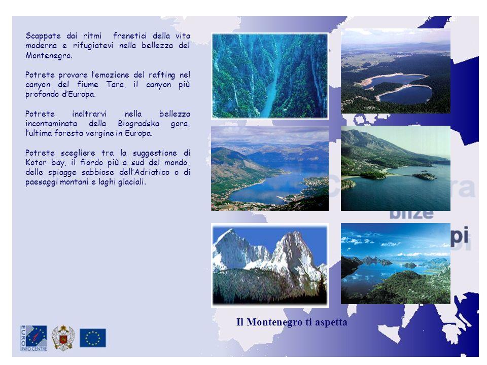 Il Montenegro ti aspetta