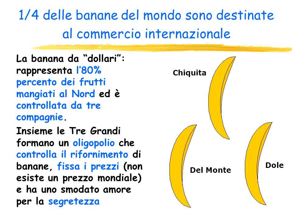 1/4 delle banane del mondo sono destinate al commercio internazionale