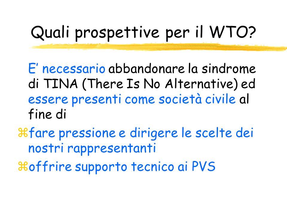 Quali prospettive per il WTO