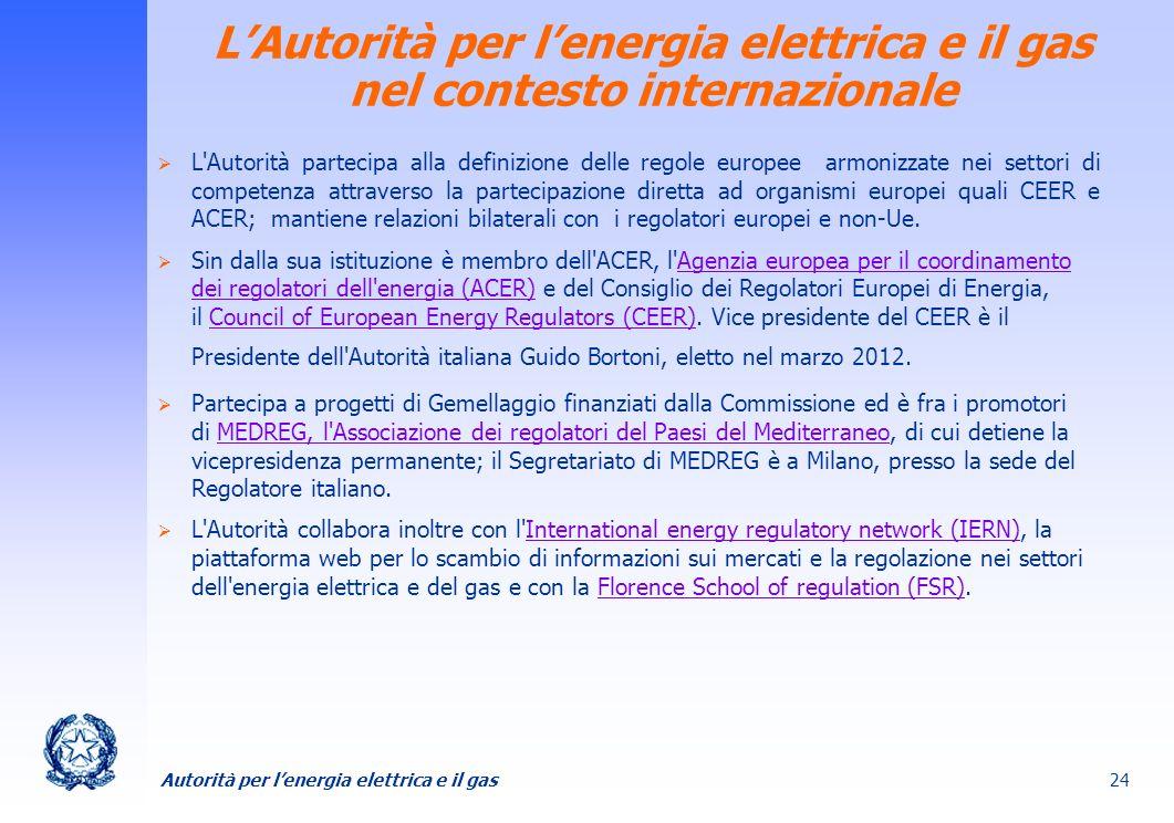 L'Autorità per l'energia elettrica e il gas nel contesto internazionale