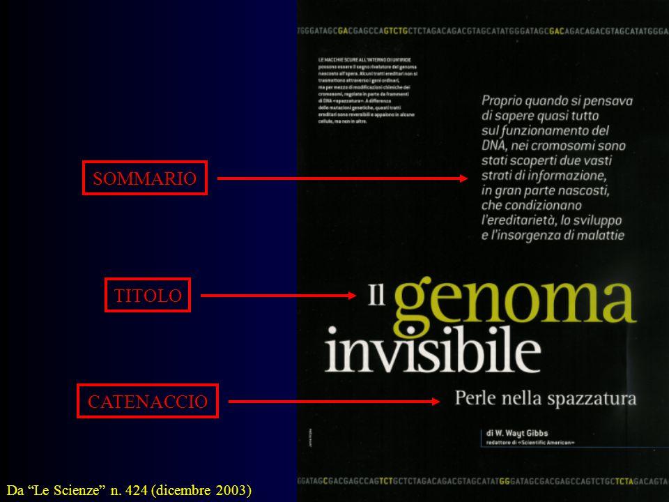 SOMMARIO TITOLO CATENACCIO Da Le Scienze n. 424 (dicembre 2003)