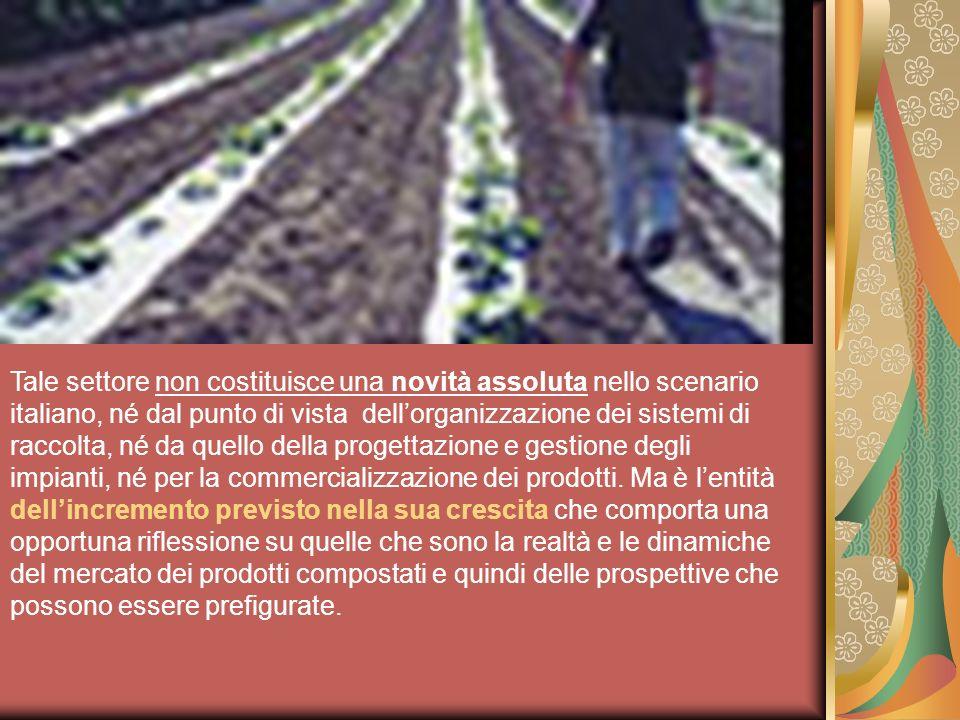 Tale settore non costituisce una novità assoluta nello scenario italiano, né dal punto di vista dell'organizzazione dei sistemi di raccolta, né da quello della progettazione e gestione degli impianti, né per la commercializzazione dei prodotti.
