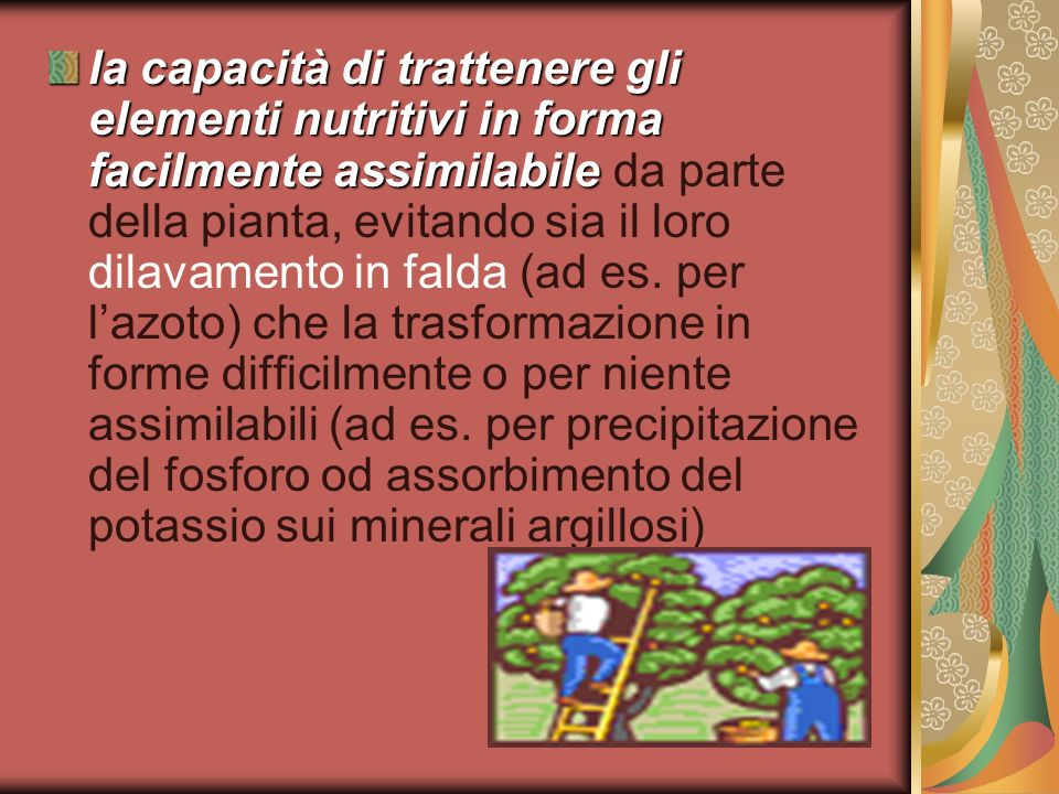 la capacità di trattenere gli elementi nutritivi in forma facilmente assimilabile da parte della pianta, evitando sia il loro dilavamento in falda (ad es.