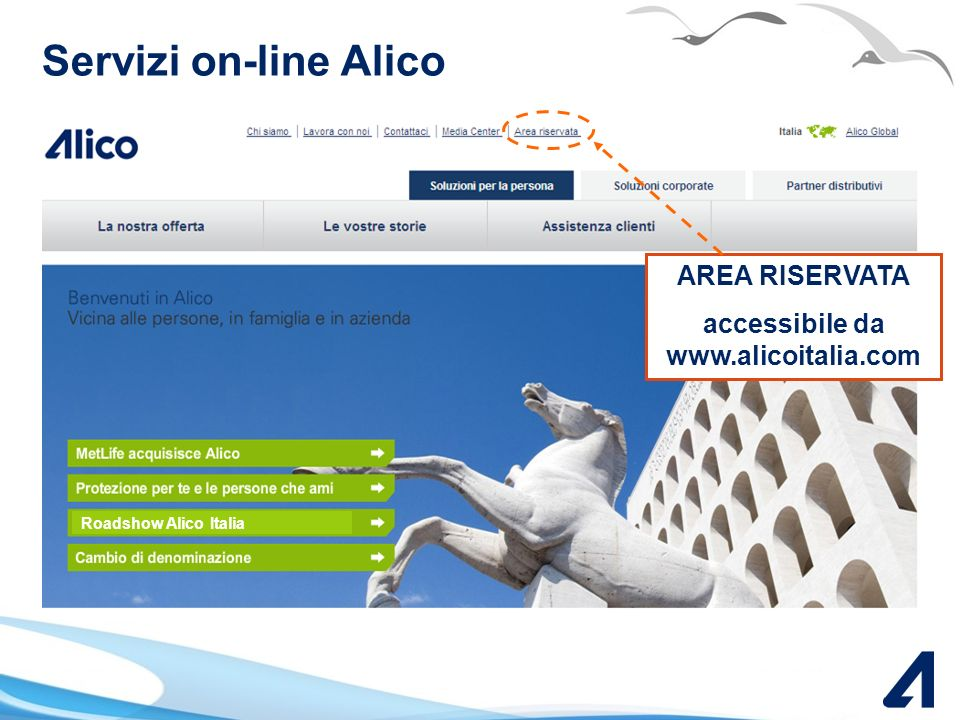 accessibile da www.alicoitalia.com