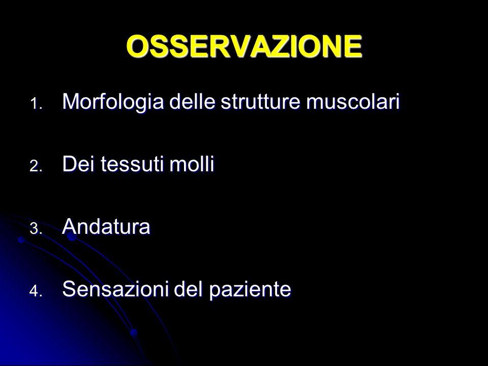 OSSERVAZIONE Morfologia delle strutture muscolari Dei tessuti molli