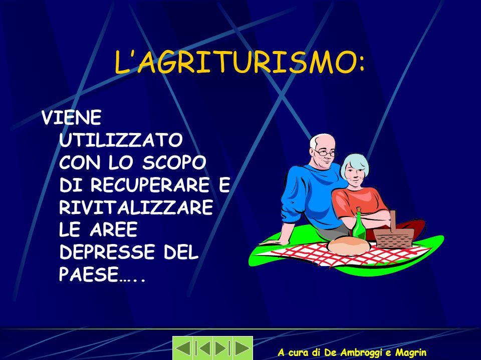 A cura di De Ambroggi e Magrin