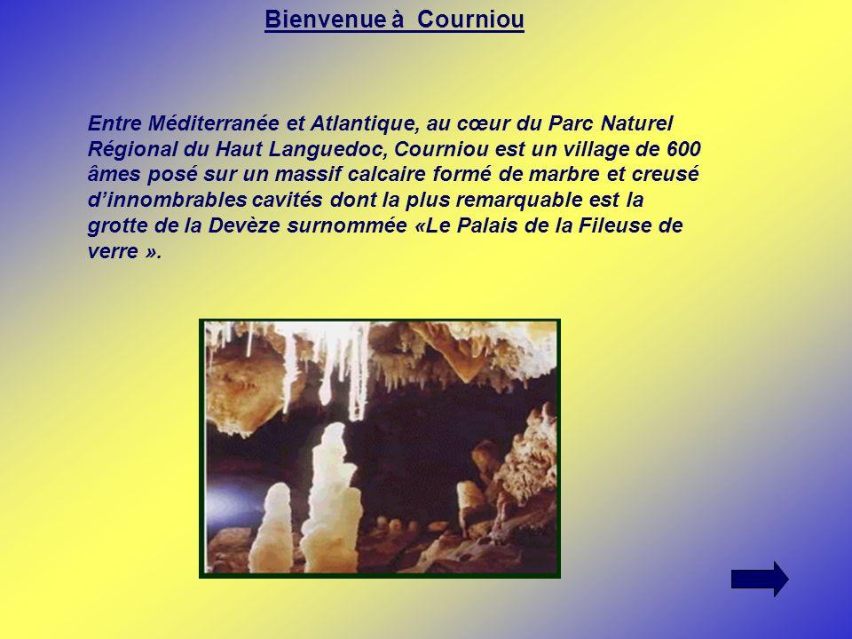 Bienvenue à Courniou