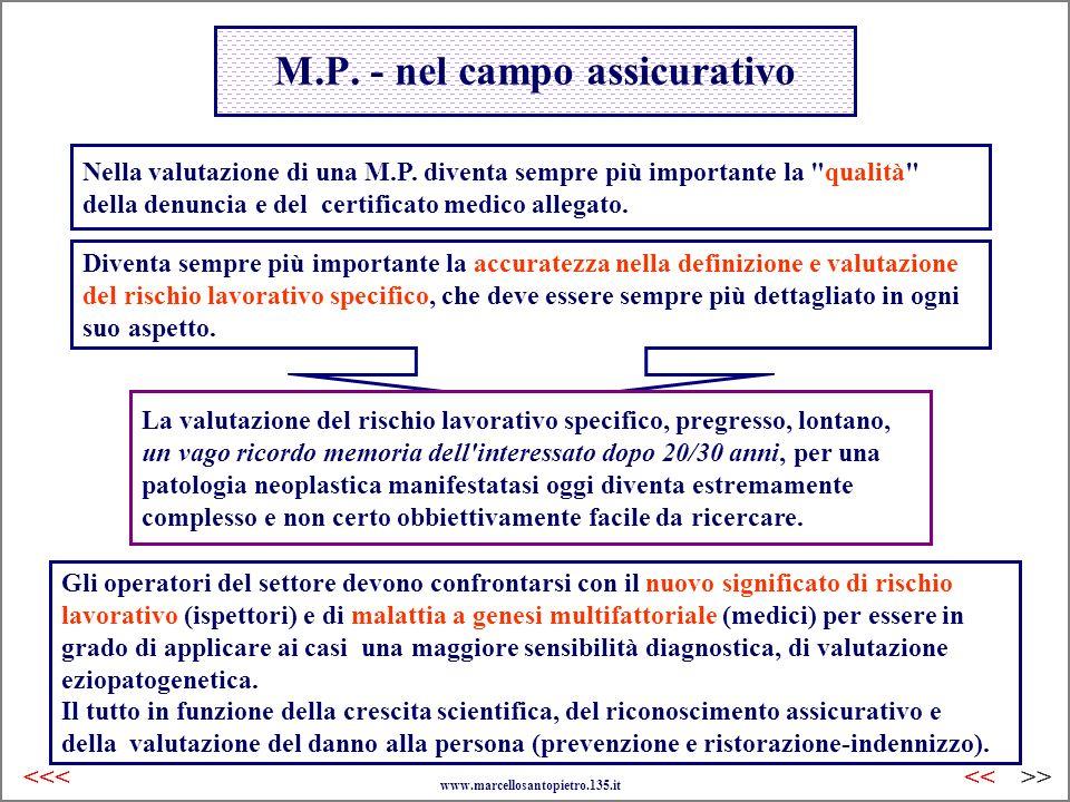 M.P. - nel campo assicurativo
