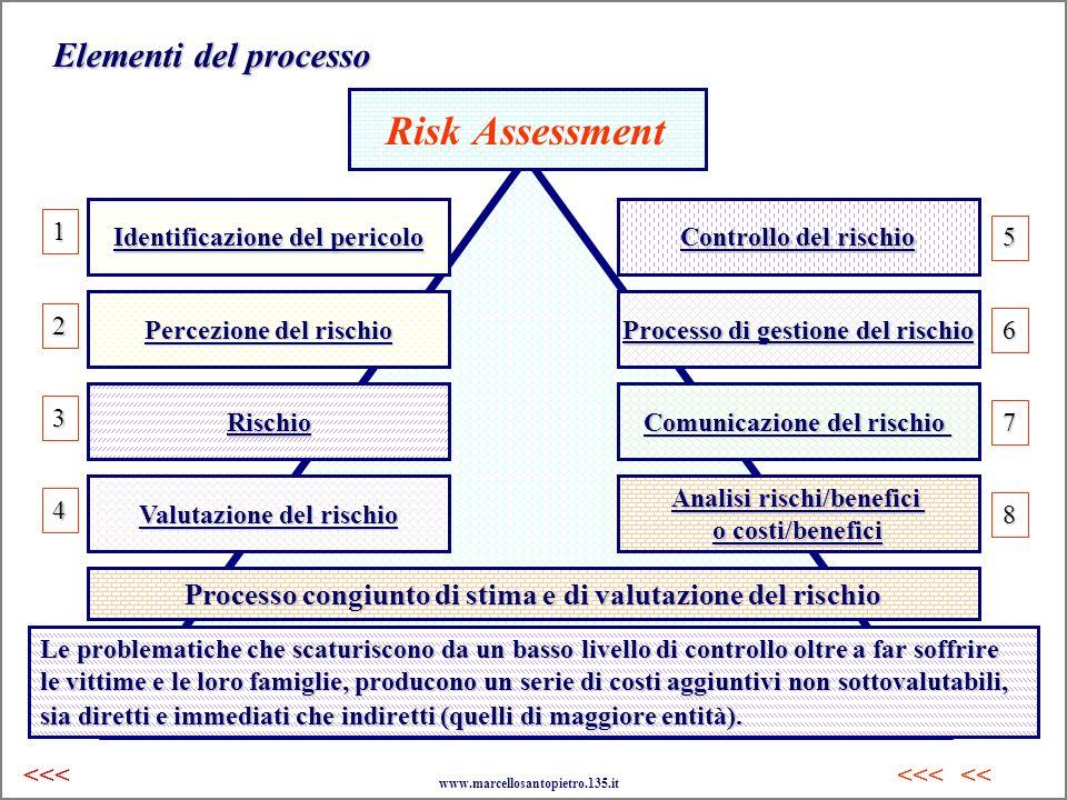 Risk Assessment Elementi del processo