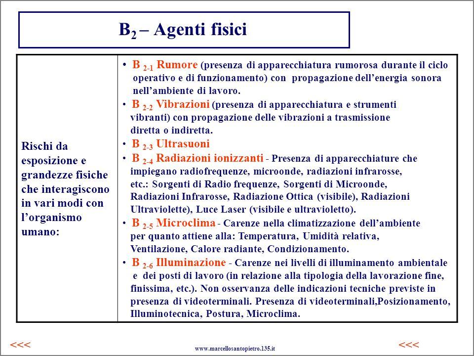 B2 – Agenti fisiciRischi da esposizione e grandezze fisiche che interagiscono in vari modi con l'organismo umano: