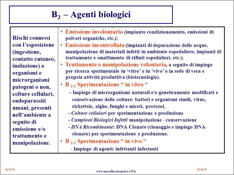 B3 – Agenti biologici