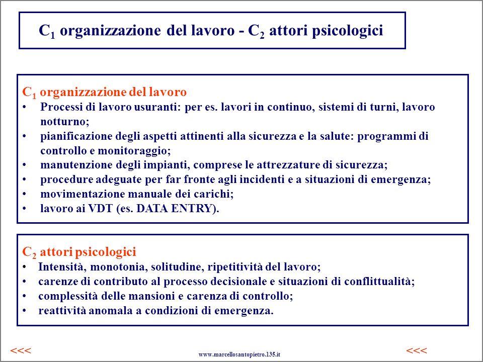 C1 organizzazione del lavoro - C2 attori psicologici