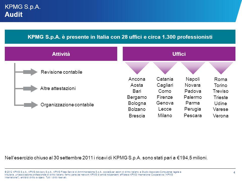 KPMG S.p.A. Il portafoglio di servizi