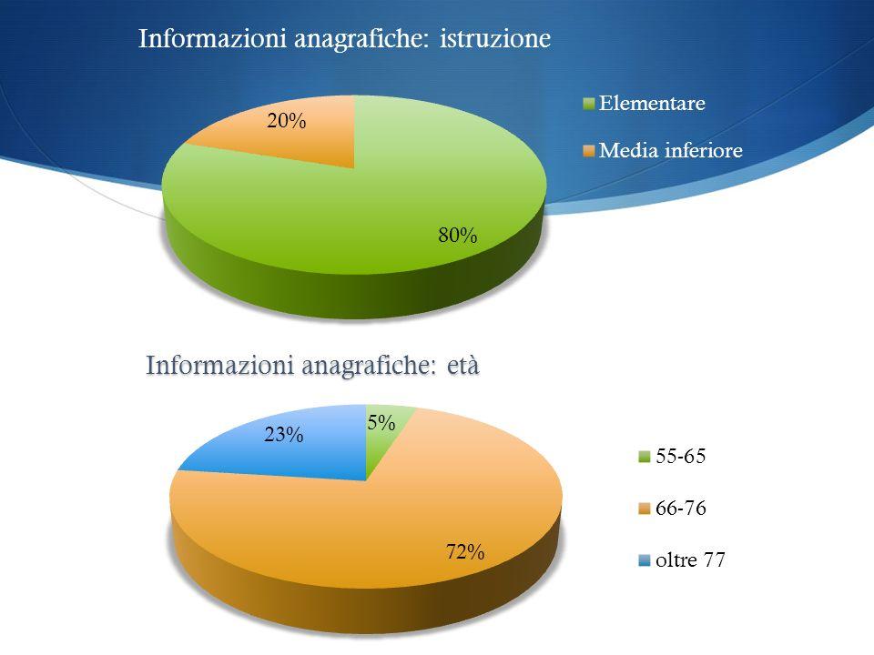 Informazioni anagrafiche: istruzione
