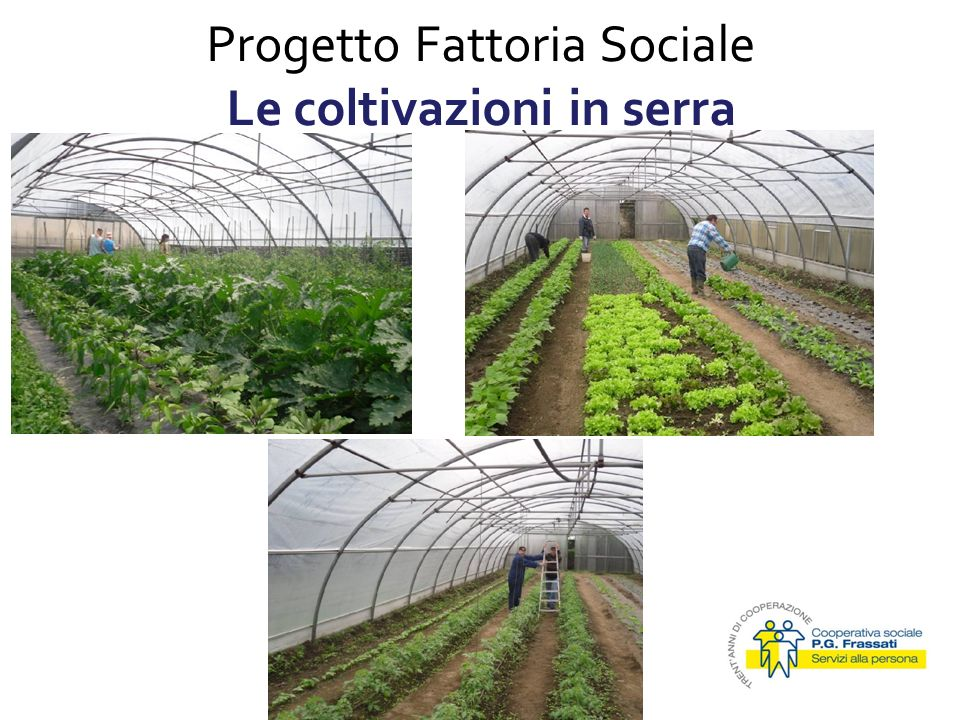Progetto Fattoria Sociale Le coltivazioni in serra