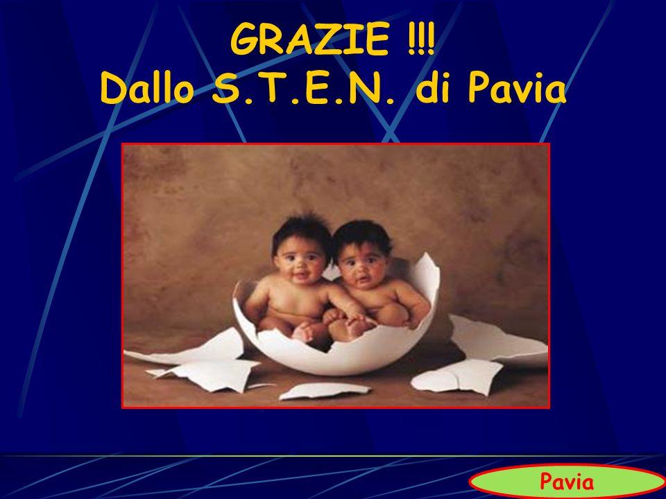 GRAZIE !!! Dallo S.T.E.N. di Pavia