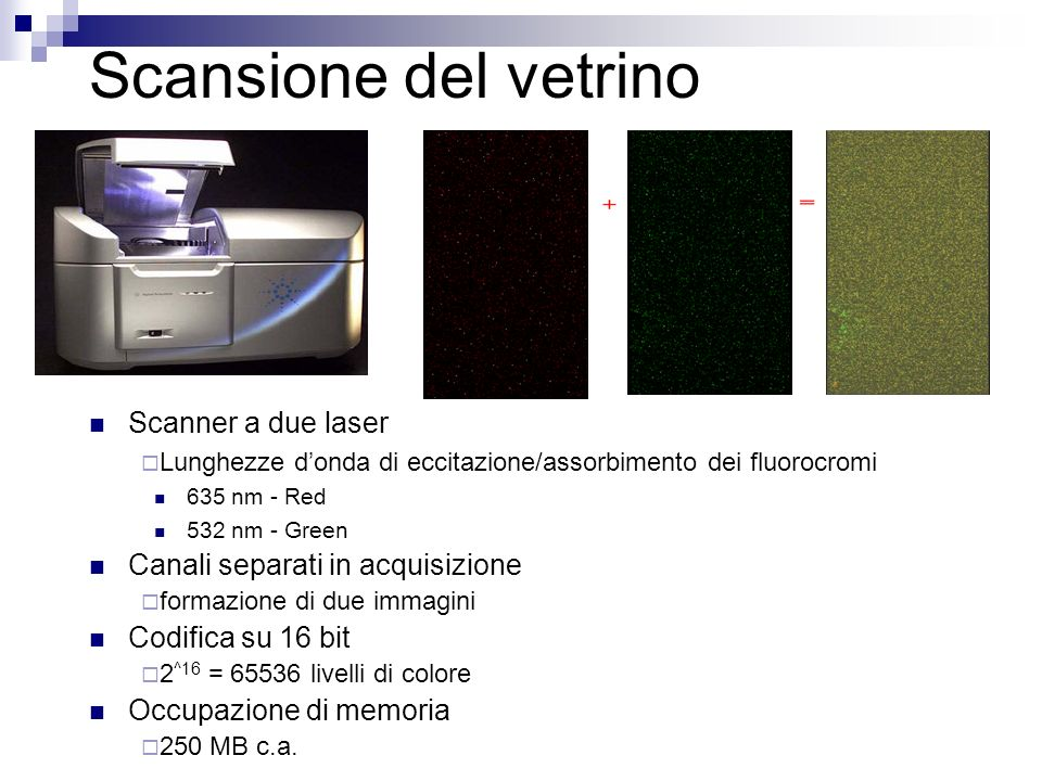 Scansione del vetrino Scanner a due laser