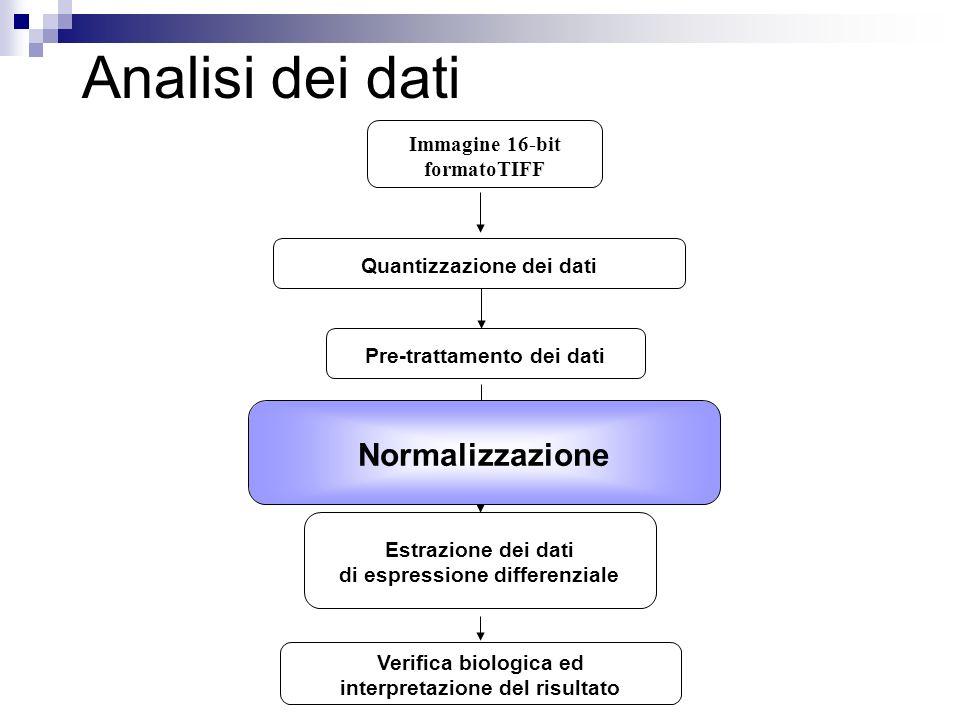 Analisi dei dati Normalizzazione Immagine 16-bit formatoTIFF