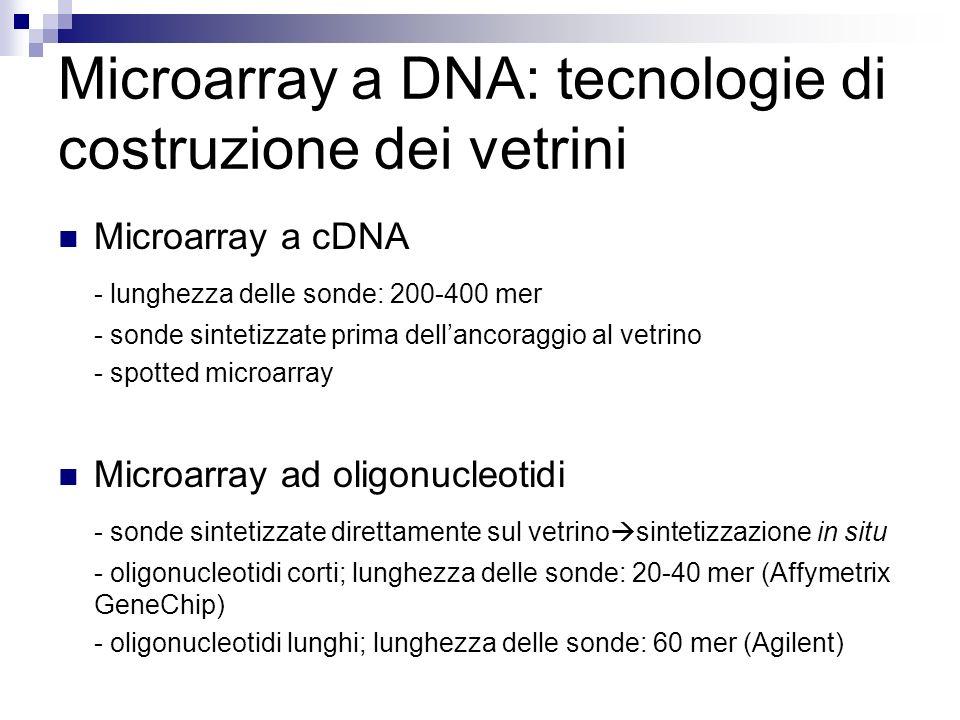 Microarray a DNA: tecnologie di costruzione dei vetrini
