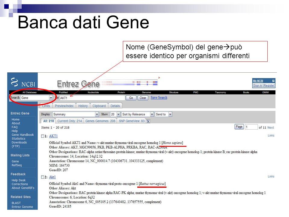 Banca dati Gene Nome (GeneSymbol) del genepuò essere identico per organismi differenti