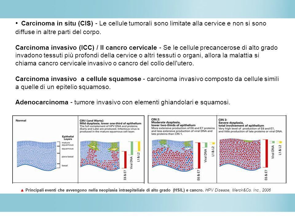 Carcinoma in situ (CIS) - Le cellule tumorali sono limitate alla cervice e non si sono diffuse in altre parti del corpo. Carcinoma invasivo (ICC) / Il cancro cervicale - Se le cellule precancerose di alto grado invadono tessuti più profondi della cervice o altri tessuti o organi, allora la malattia si chiama cancro cervicale invasivo o cancro del collo dell utero. Carcinoma invasivo a cellule squamose - carcinoma invasivo composto da cellule simili a quelle di un epitelio squamoso. Adenocarcinoma - tumore invasivo con elementi ghiandolari e squamosi.