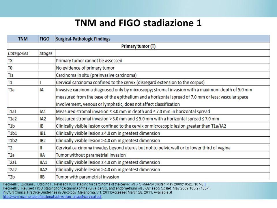 TNM and FIGO stadiazione 1