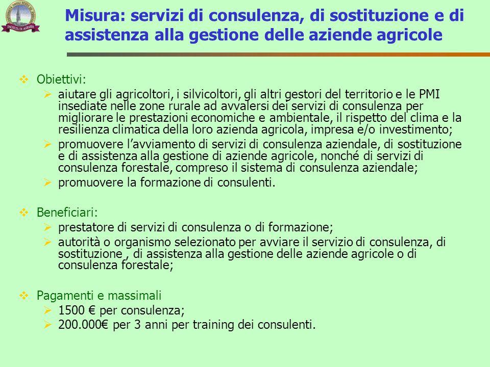 Misura: servizi di consulenza, di sostituzione e di assistenza alla gestione delle aziende agricole
