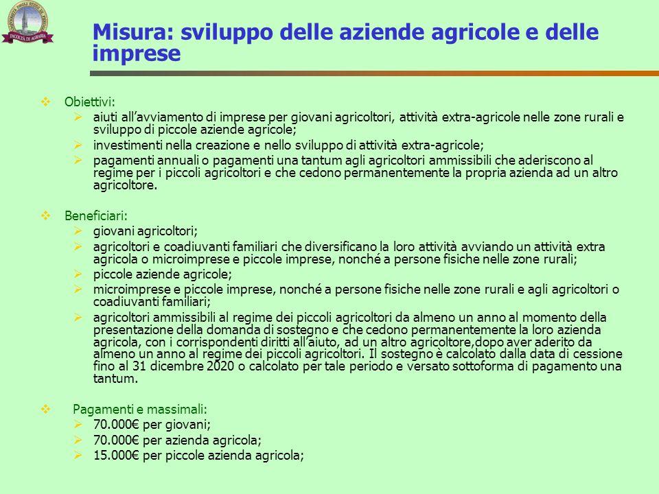 Misura: sviluppo delle aziende agricole e delle imprese