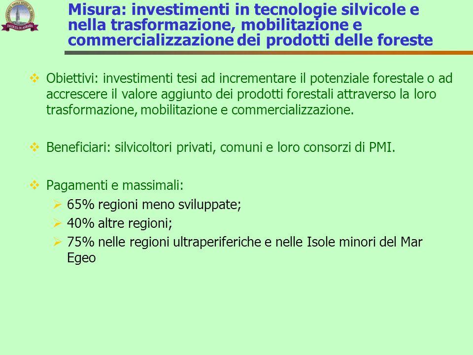 Misura: investimenti in tecnologie silvicole e nella trasformazione, mobilitazione e commercializzazione dei prodotti delle foreste
