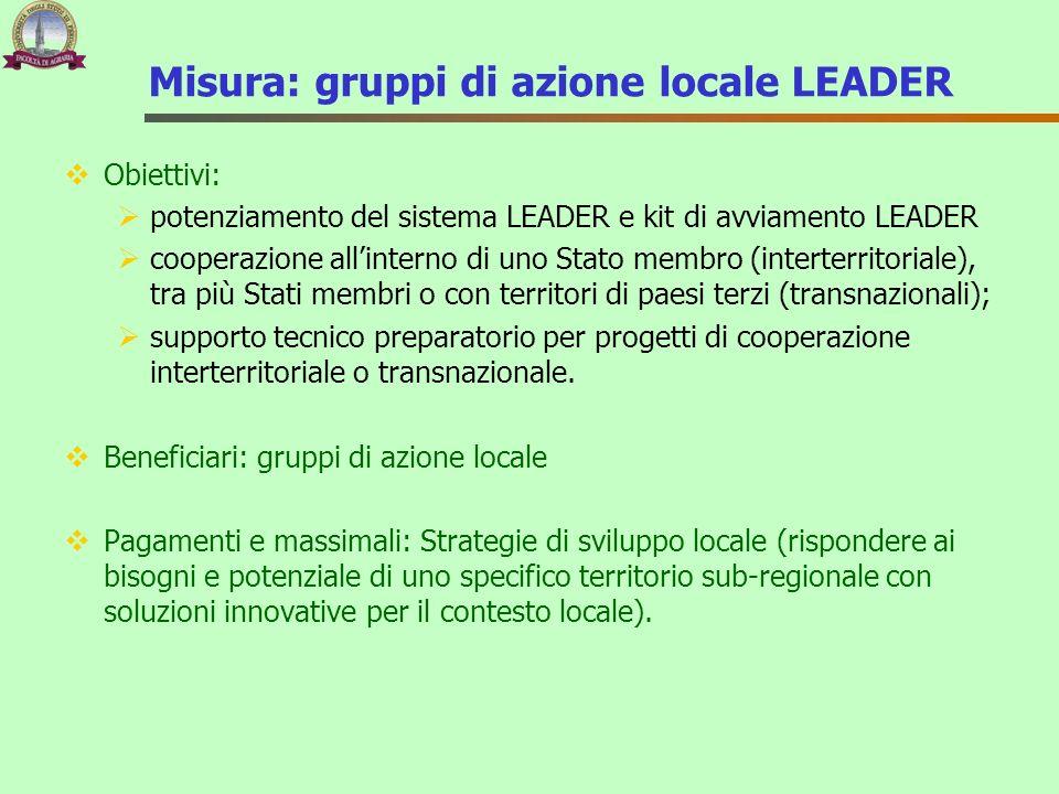 Misura: gruppi di azione locale LEADER