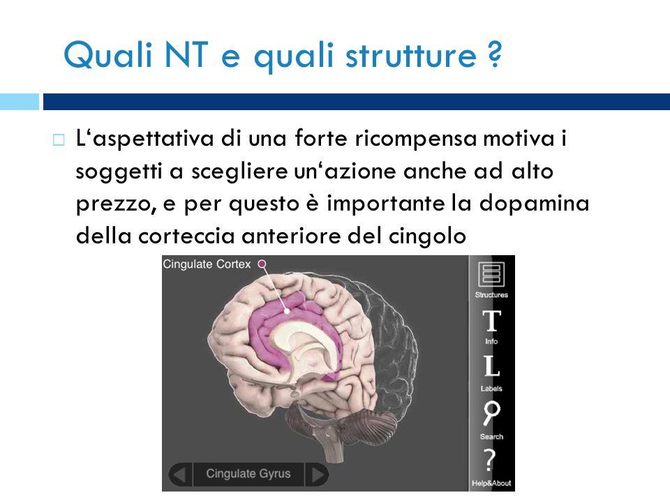 Quali NT e quali strutture