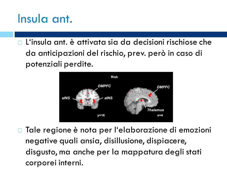 Insula ant. L'insula ant. è attivata sia da decisioni rischiose che da anticipazioni del rischio, prev. però in caso di potenziali perdite.