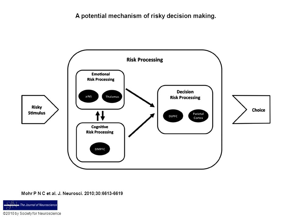 A potential mechanism of risky decision making.