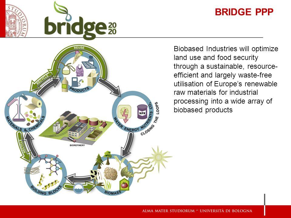 BRIDGE PPP