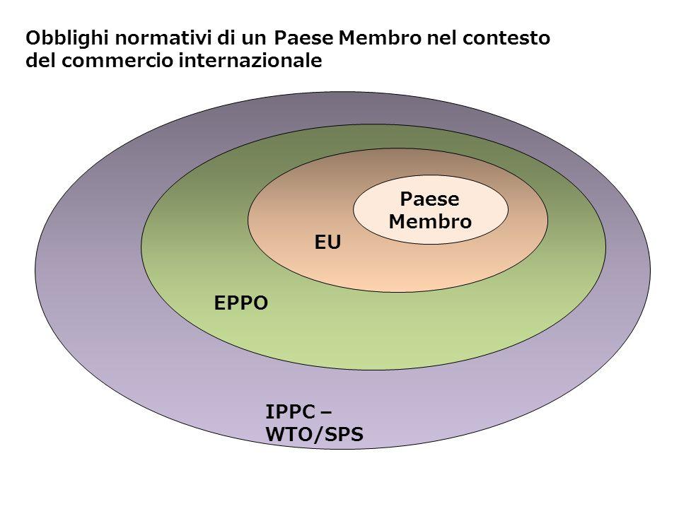 Obblighi normativi di un Paese Membro nel contesto del commercio internazionale