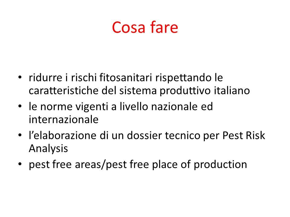 Cosa fare ridurre i rischi fitosanitari rispettando le caratteristiche del sistema produttivo italiano.