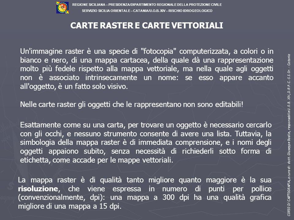 CARTE RASTER E CARTE VETTORIALI