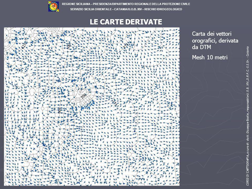 LE CARTE DERIVATE Carta dei vettori orografici, derivata da DTM