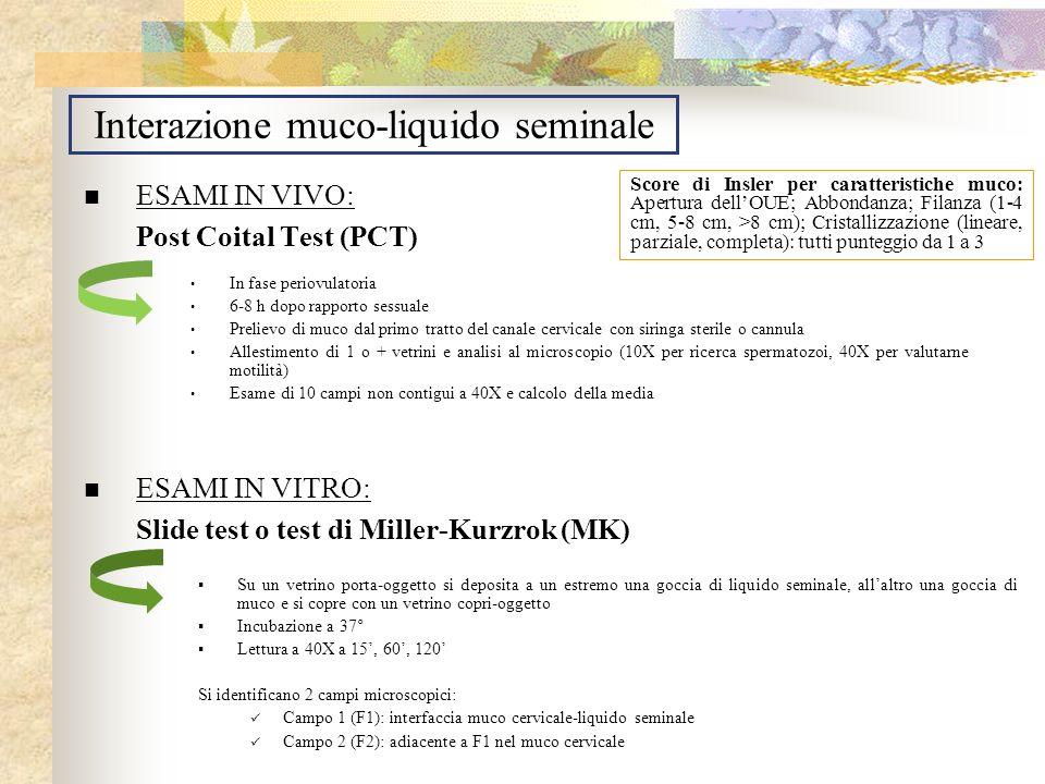 Interazione muco-liquido seminale