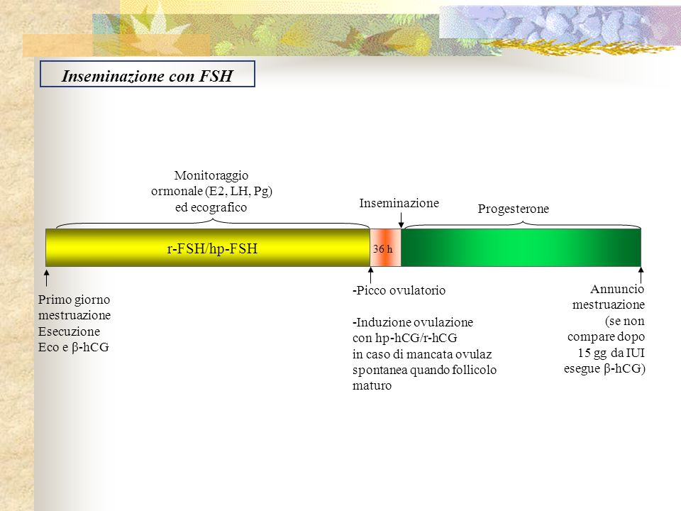 Monitoraggio ormonale (E2, LH, Pg) ed ecografico