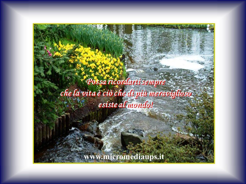 Possa ricordarti sempre che la vita è ciò che di più meraviglioso esiste al mondo!