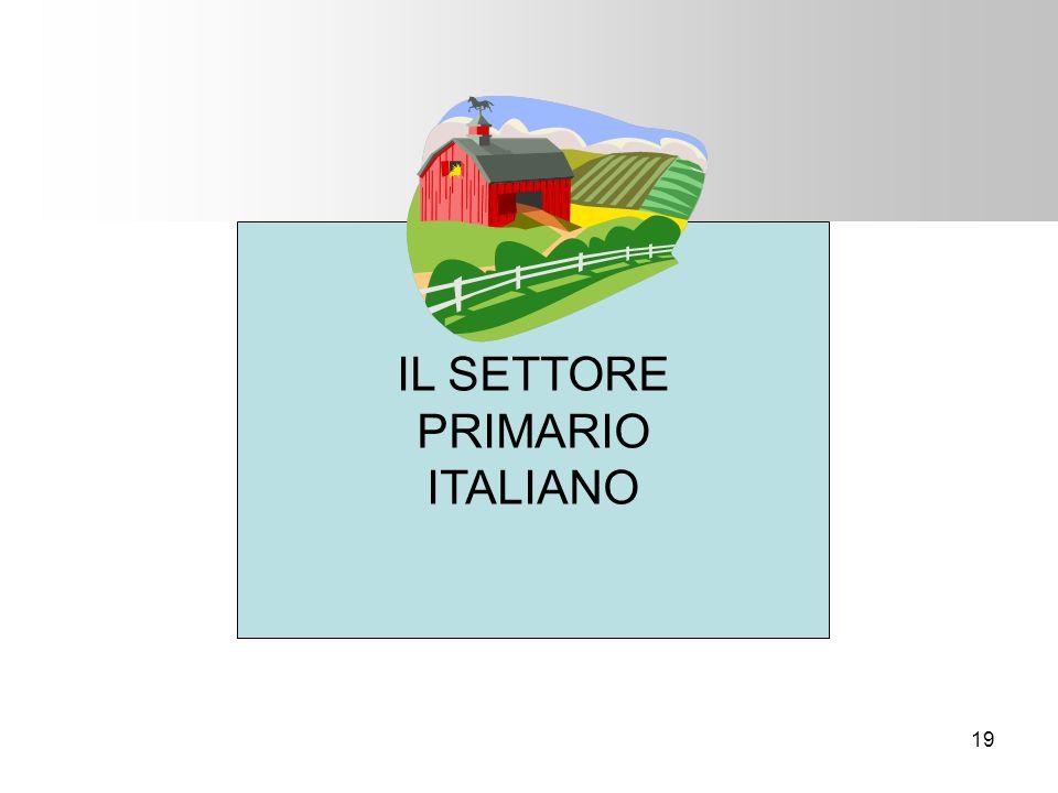 IL SETTORE PRIMARIO ITALIANO