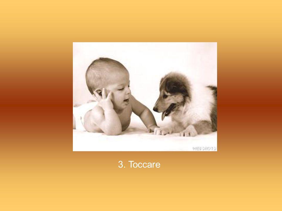 3. Toccare