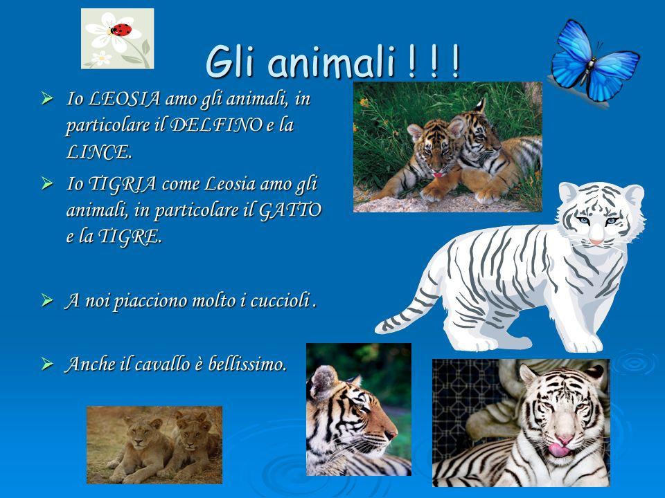 Gli animali ! ! ! Io LEOSIA amo gli animali, in particolare il DELFINO e la LINCE.