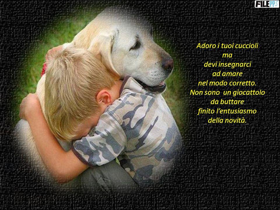 Adoro i tuoi cuccioli ma. devi insegnarci. ad amare. nel modo corretto. Non sono un giocattolo.