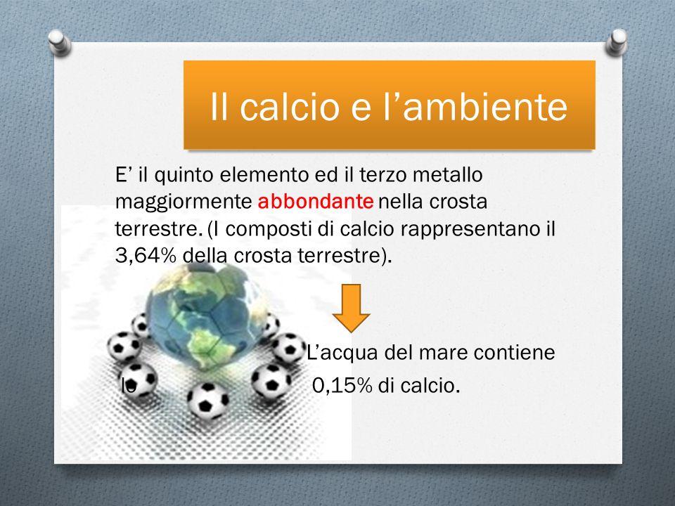 Il calcio e l'ambiente