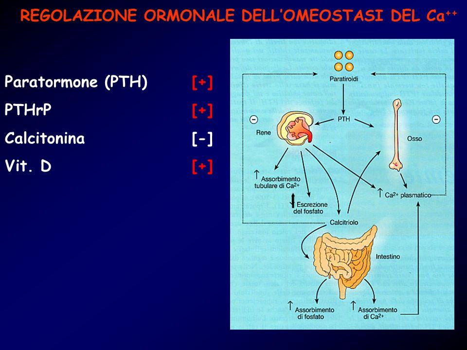 REGOLAZIONE ORMONALE DELL'OMEOSTASI DEL Ca++