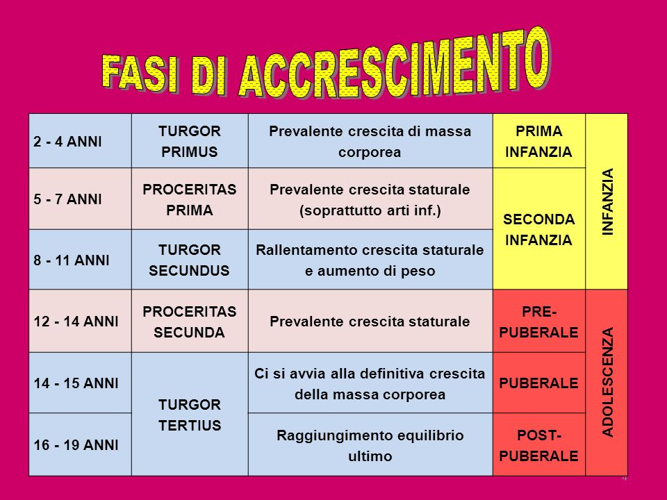 FASI DI ACCRESCIMENTO 2 - 4 ANNI TURGOR PRIMUS